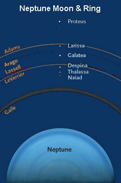 Neptune Moon and Rings